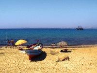 na plaży - Tunezja